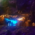 Year 8 Visit to Cheddar Gorge