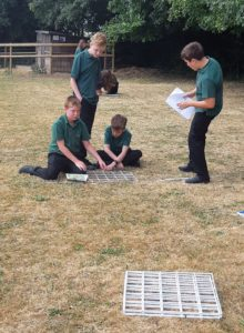 Making the most of the sunshine in Year 7 Science