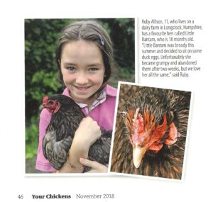 Ruby and her chickens make headlines