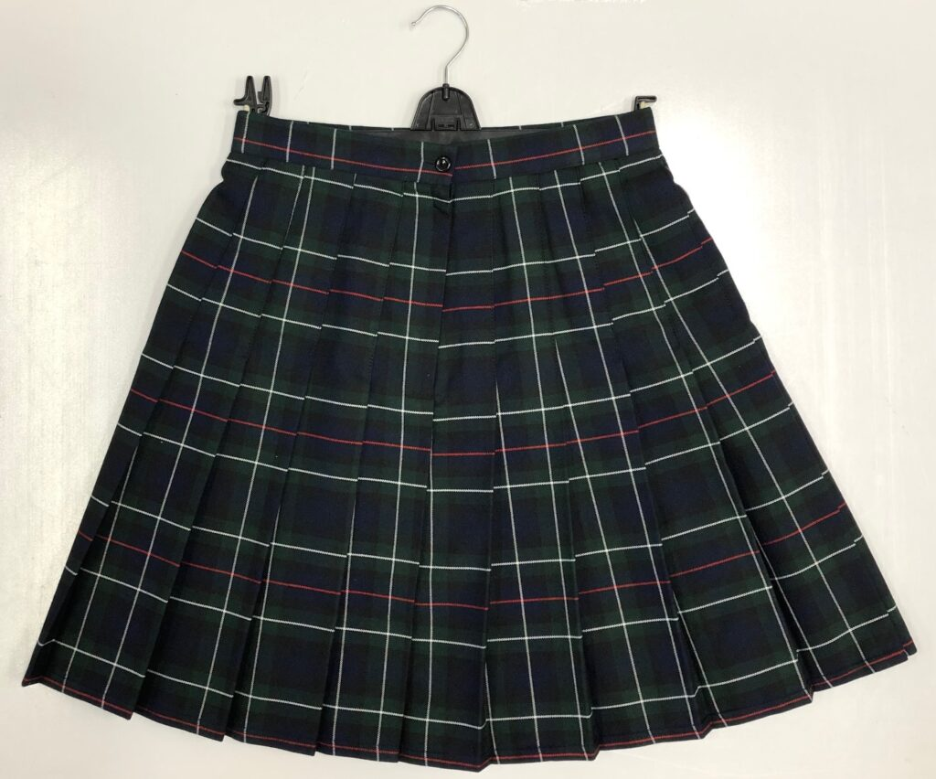 This image has an empty alt attribute; its file name is skirt-1024x852.jpg